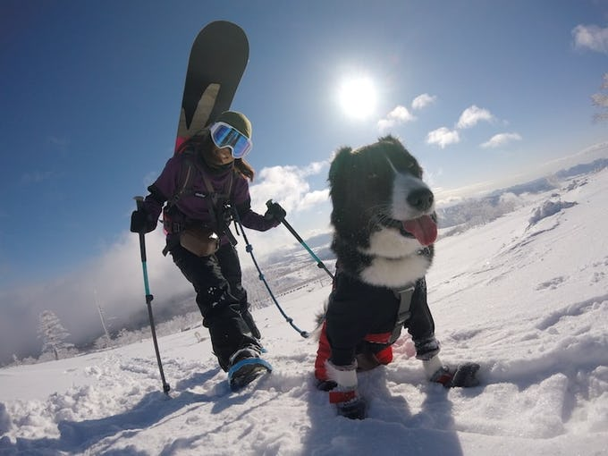 スノーボード 板の種類と選び方をご紹介