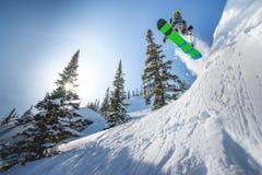 スノーパークが楽しい長野・山梨・静岡のスキー場を紹介(八ヶ岳・蓼科・富士編part2)