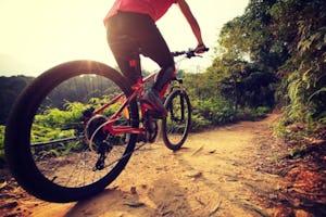 マウンテンバイク(MTB)